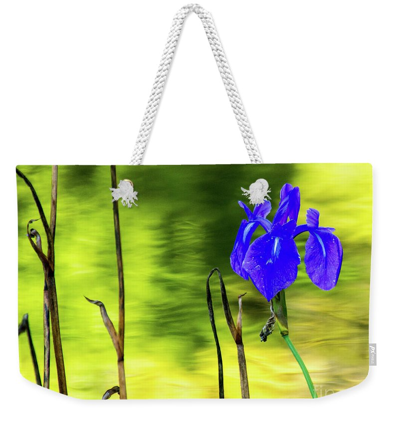 Tinas Captured Moments Weekender Tote Bag featuring the photograph Purple Iris by Tina Hailey