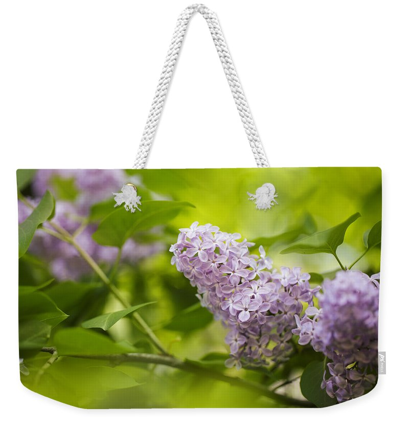 Lilac Weekender Tote Bag featuring the photograph Purple Lilac by Nailia Schwarz