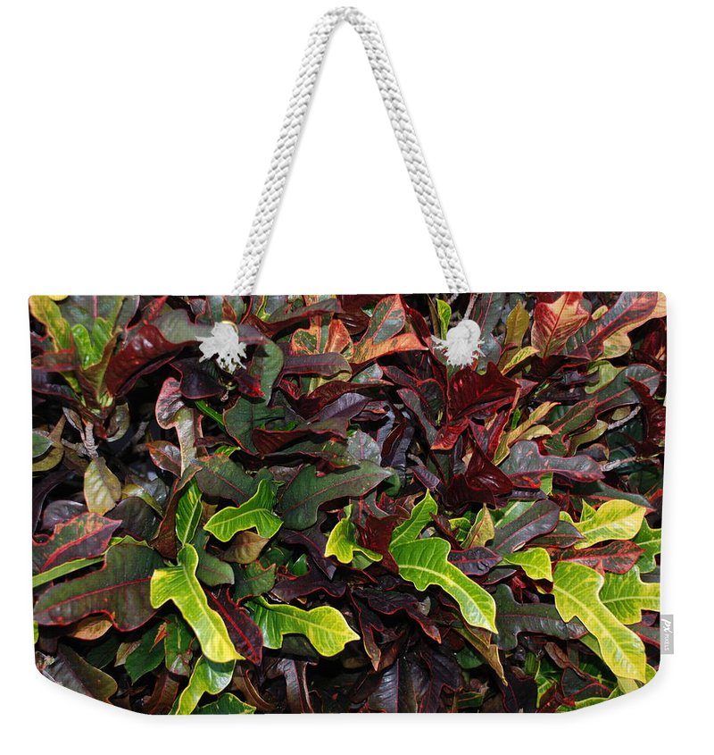 Macro Weekender Tote Bag featuring the photograph Red Green Leaves by Rob Hans