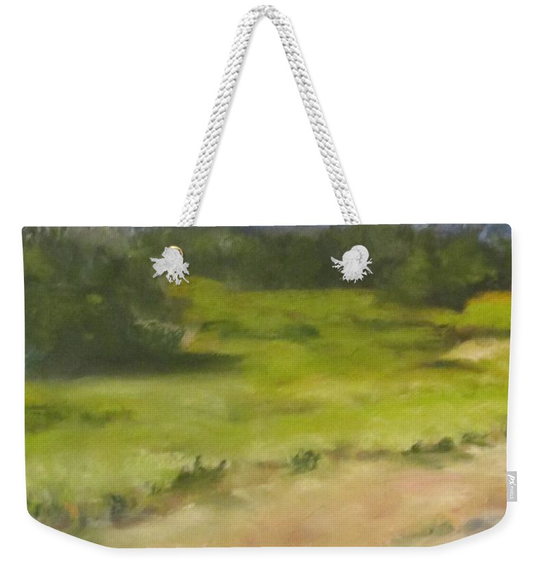 Red River Marsh Weekender Tote Bag featuring the painting Red River Marsh by Dianne Quigley
