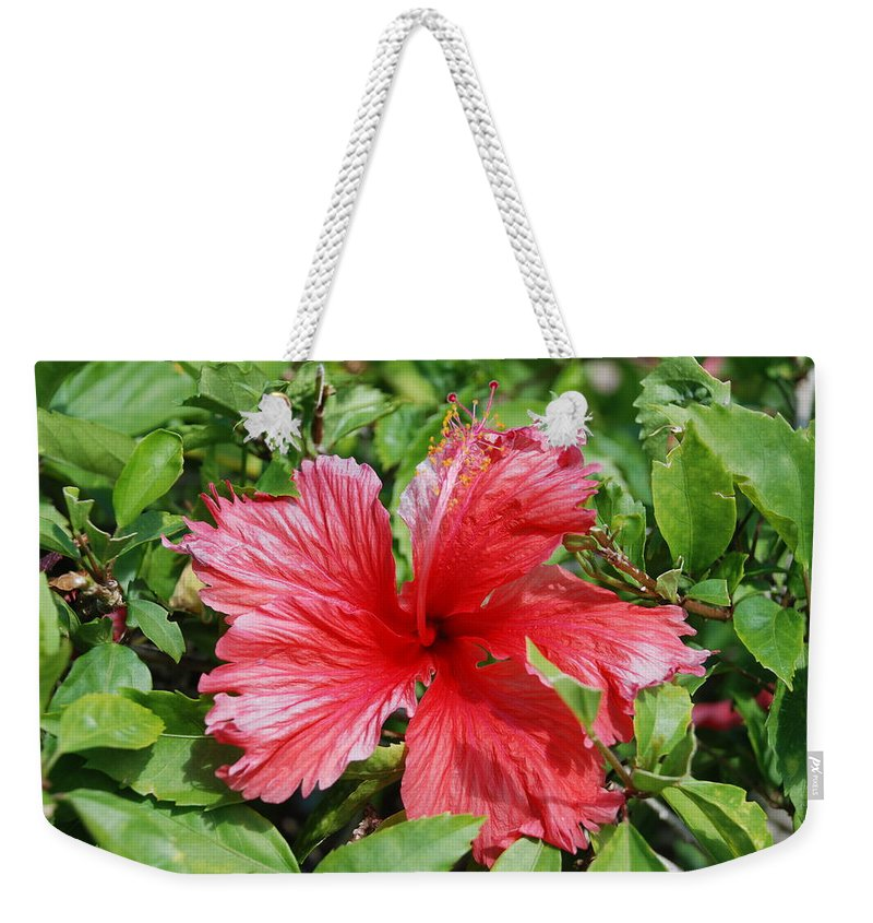 Red Weekender Tote Bag featuring the photograph RED by Rob Hans