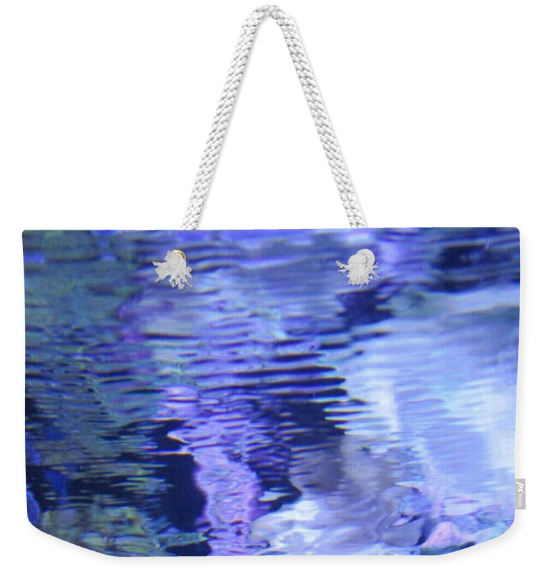 Aquarium Weekender Tote Bag featuring the photograph Reef Reflections by Cynthia Conklin