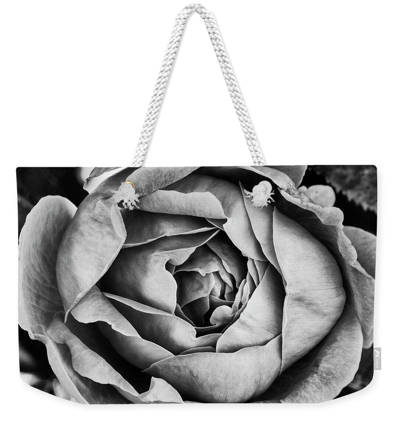 Rose Weekender Tote Bag featuring the photograph Rose Closeup In Monochrome by Vishwanath Bhat