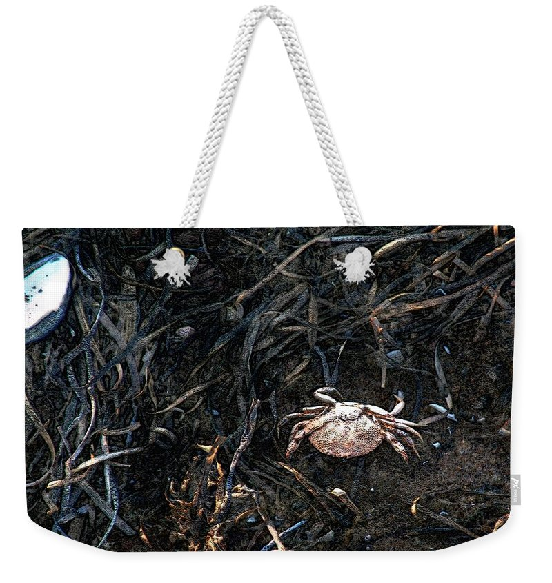 Beach Weekender Tote Bag featuring the painting Scuttling To Safety by RC DeWinter