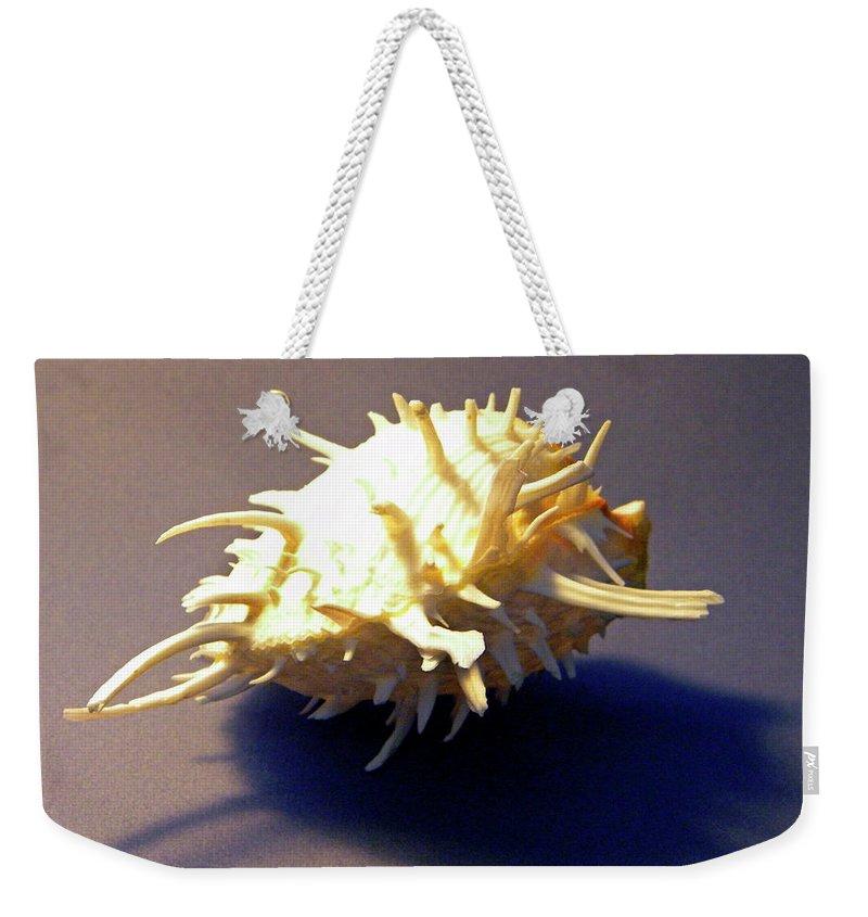 Frank Wilson Weekender Tote Bag featuring the photograph Seashell Spondylus Americanus by Frank Wilson