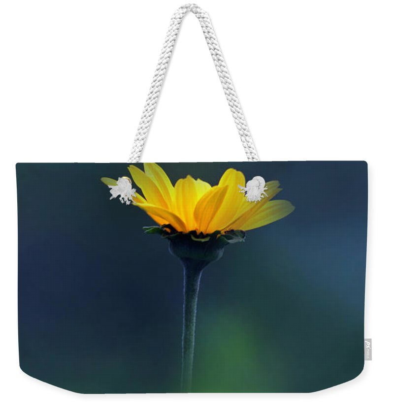 Floral Weekender Tote Bag featuring the photograph Shine by Debbie Nobile
