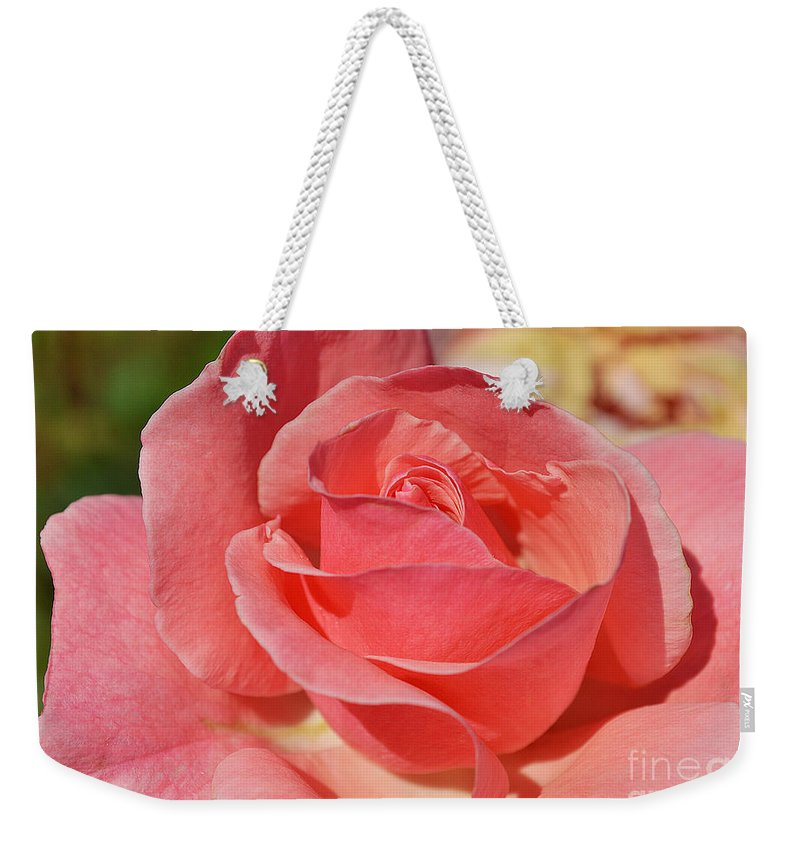 Rose Weekender Tote Bag featuring the photograph Shining For You by Felicia Tica