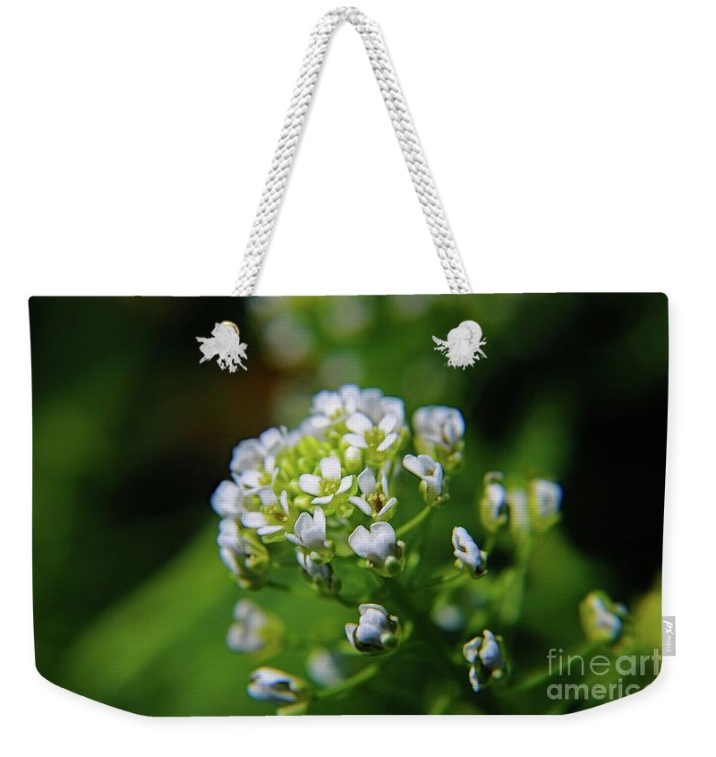 Nature Weekender Tote Bag featuring the photograph Signs Of Spring by Don Baker