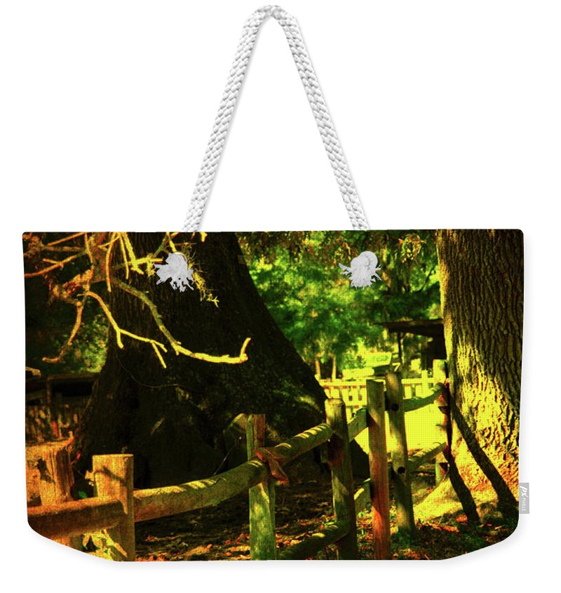 Fence Weekender Tote Bag featuring the photograph Silence by Susanne Van Hulst