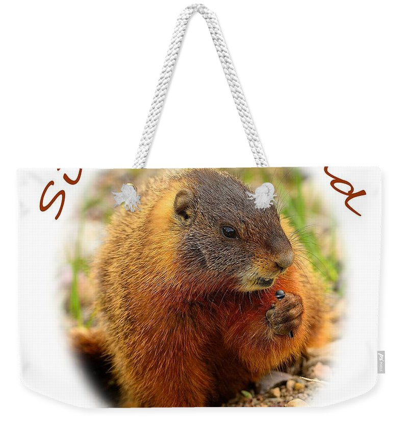T-shirt Weekender Tote Bag featuring the photograph Sing Out Loud by Greg Norrell