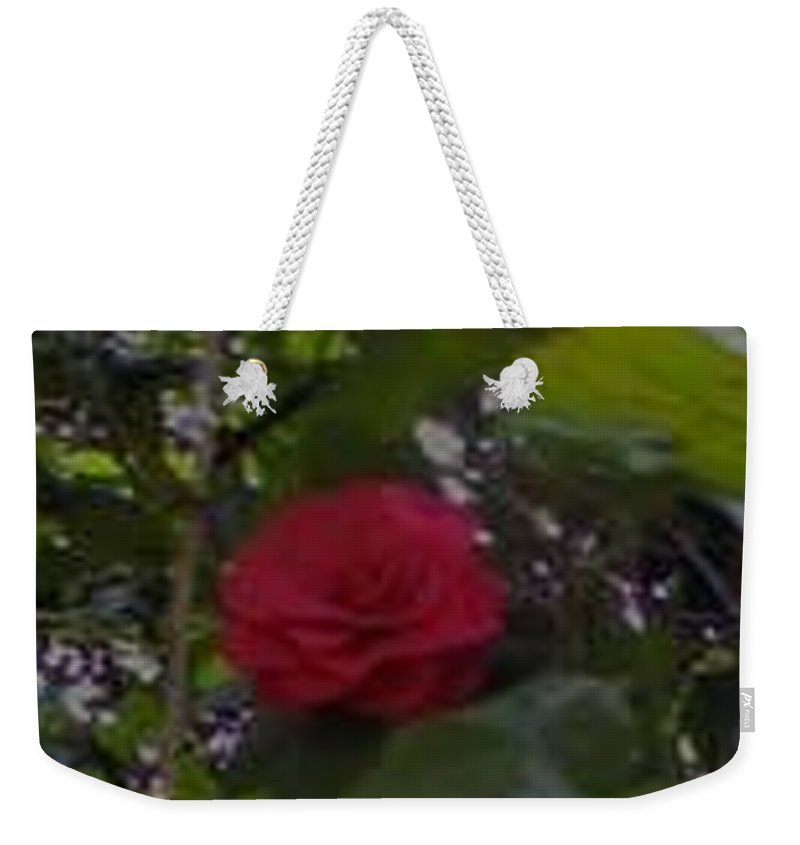 Red Rose Weekender Tote Bag featuring the photograph Single Rose by R Chambers