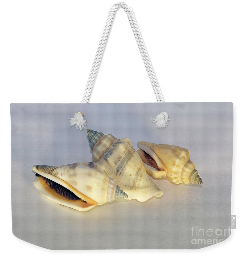 Decorations Weekender Tote Bag featuring the photograph Small Decorations by Elvira Ladocki
