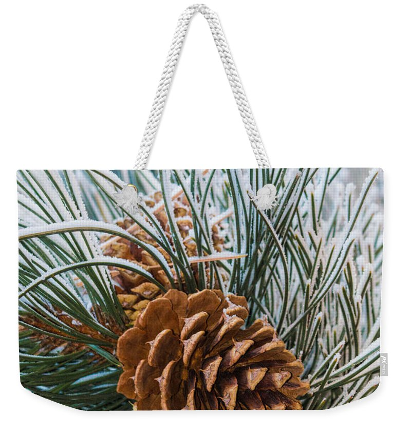 Christmas Weekender Tote Bag featuring the photograph Snowy Pine Cones by Dawn Key