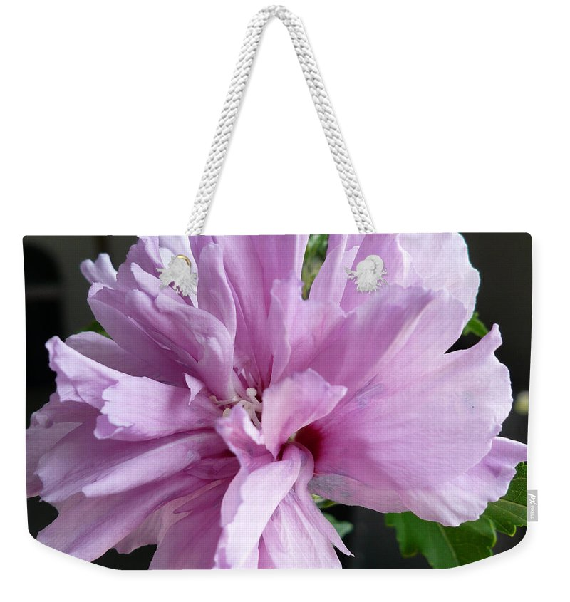 Phoyography.hibiscus Flower Floral Bloom Bush Pink Weekender Tote Bag featuring the photograph So Pink by Karin Dawn Kelshall- Best