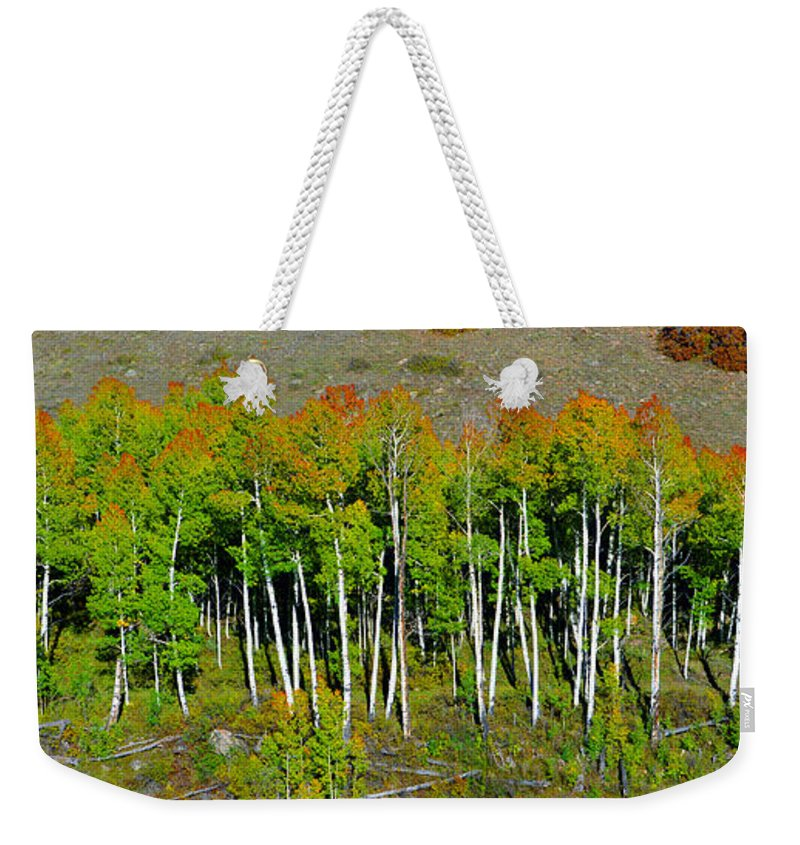 Spreading Out Weekender Tote Bag featuring the photograph Spreading Out by David Lee Thompson