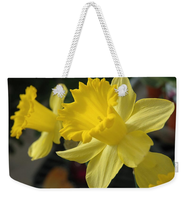 Daffodil Weekender Tote Bag featuring the photograph Spring Yellow by Jerry McElroy