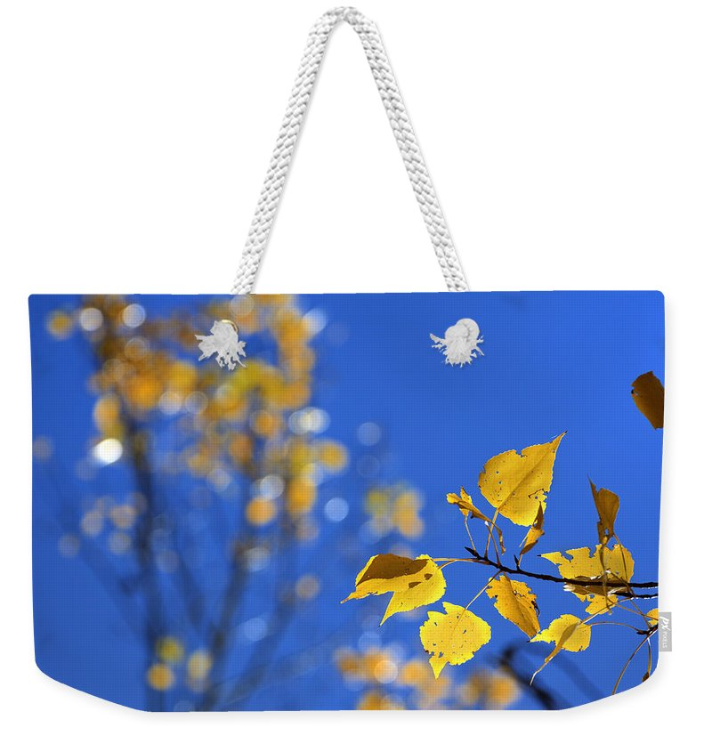 Landscape Weekender Tote Bag featuring the photograph Sweet Autumn by Guido Montanes Castillo