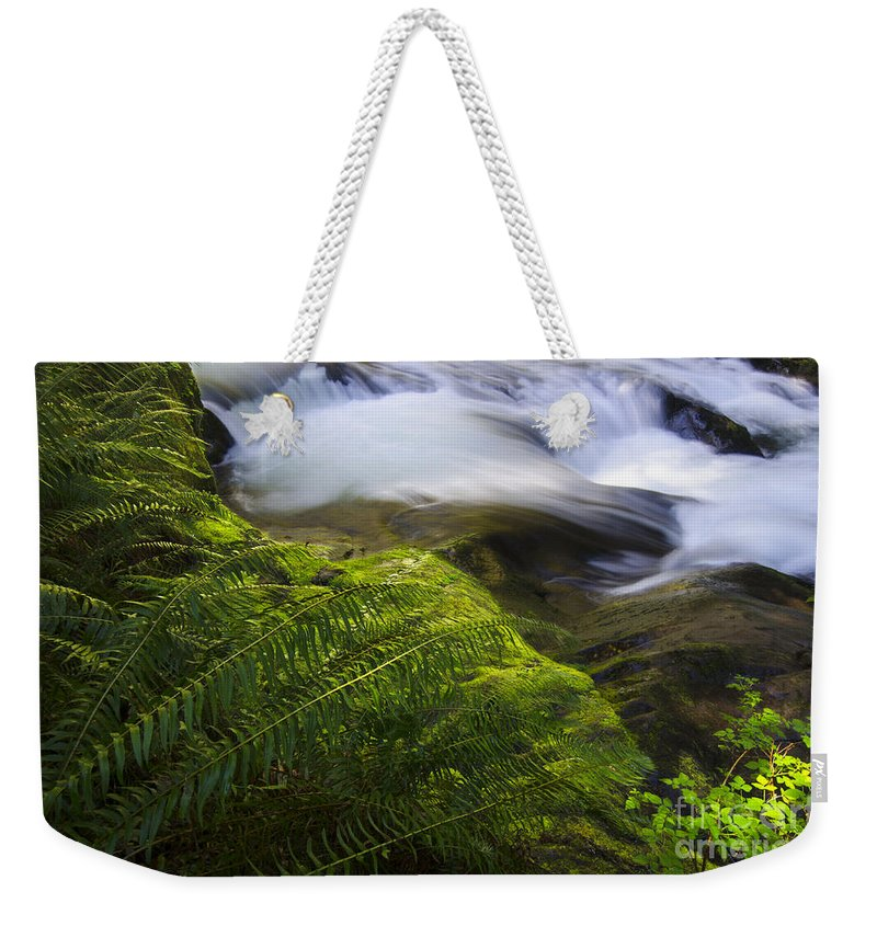 Sweet Creek Weekender Tote Bag featuring the photograph Sweet Creek Oregon 11 by Bob Christopher
