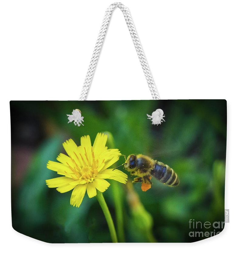 The Bee Weekender Tote Bag featuring the photograph The Bee by Mitch Shindelbower