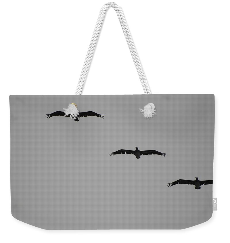 Black And White Weekender Tote Bag featuring the photograph The Birds by Rob Hans