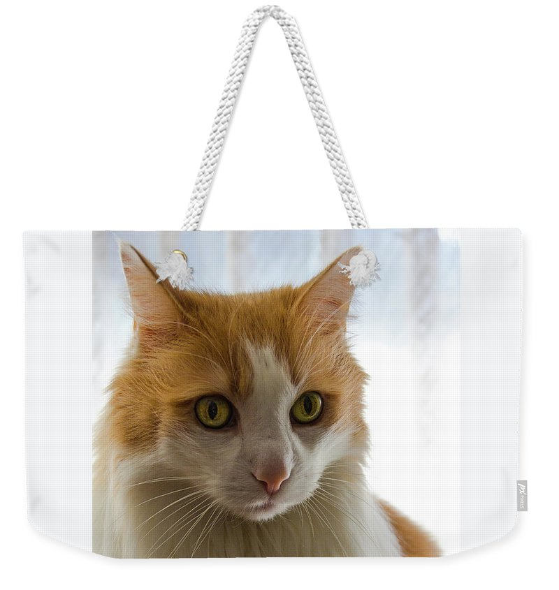 Animal Weekender Tote Bag featuring the photograph The Boss by Peteris Vaivars