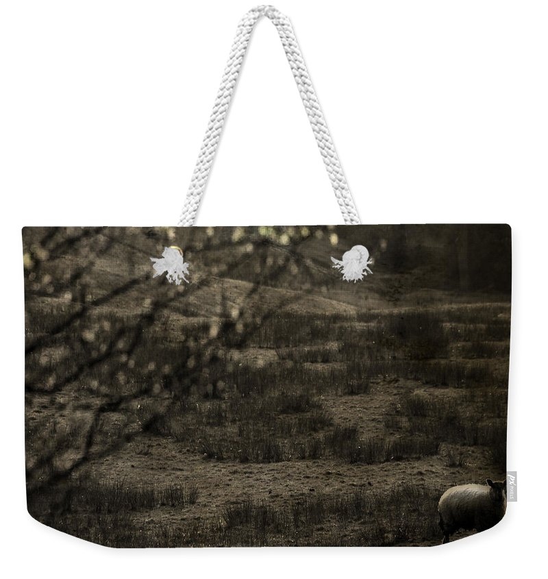 Easter Weekender Tote Bag featuring the photograph The Countryside by Angel Ciesniarska