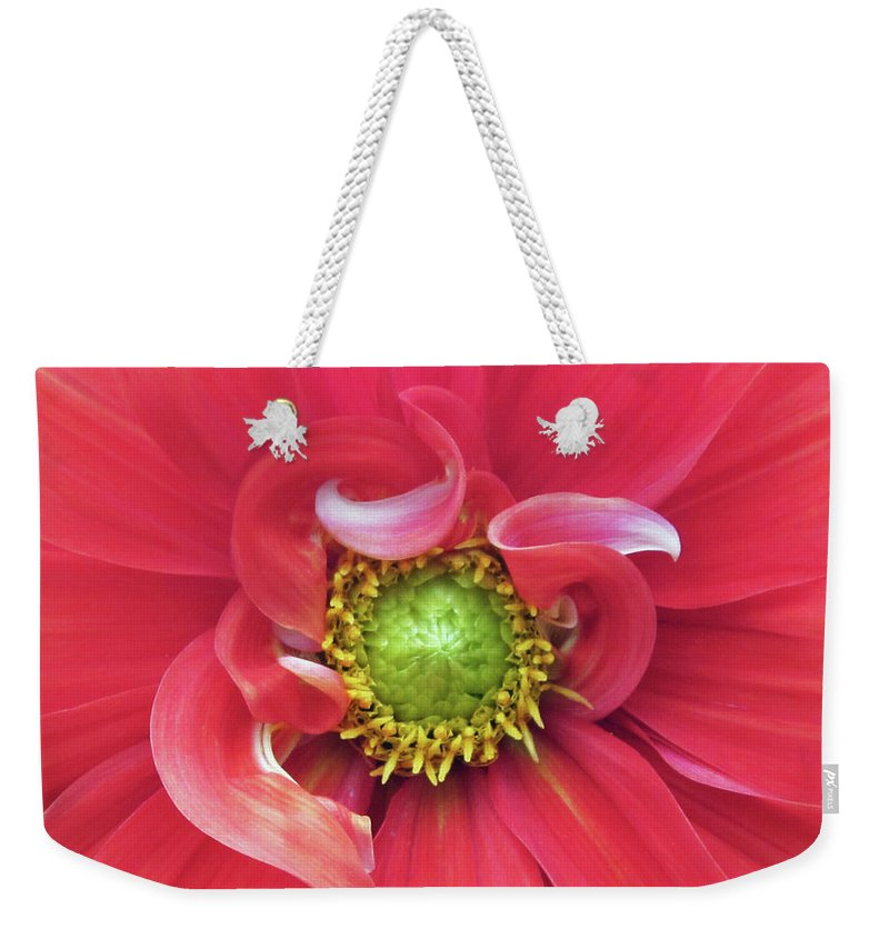 Photograph Of Dahlia Weekender Tote Bag featuring the photograph The Dahlia by Gwyn Newcombe