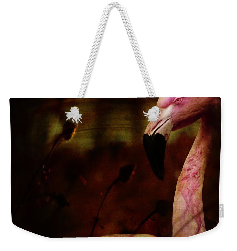 Flamingo Weekender Tote Bag featuring the photograph The Flamingo by Angel Ciesniarska