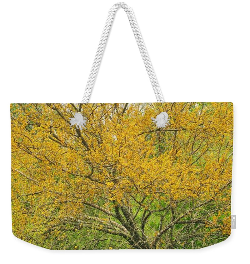 Leaning Weekender Tote Bag featuring the photograph The Leaning Tree by Gary Richards
