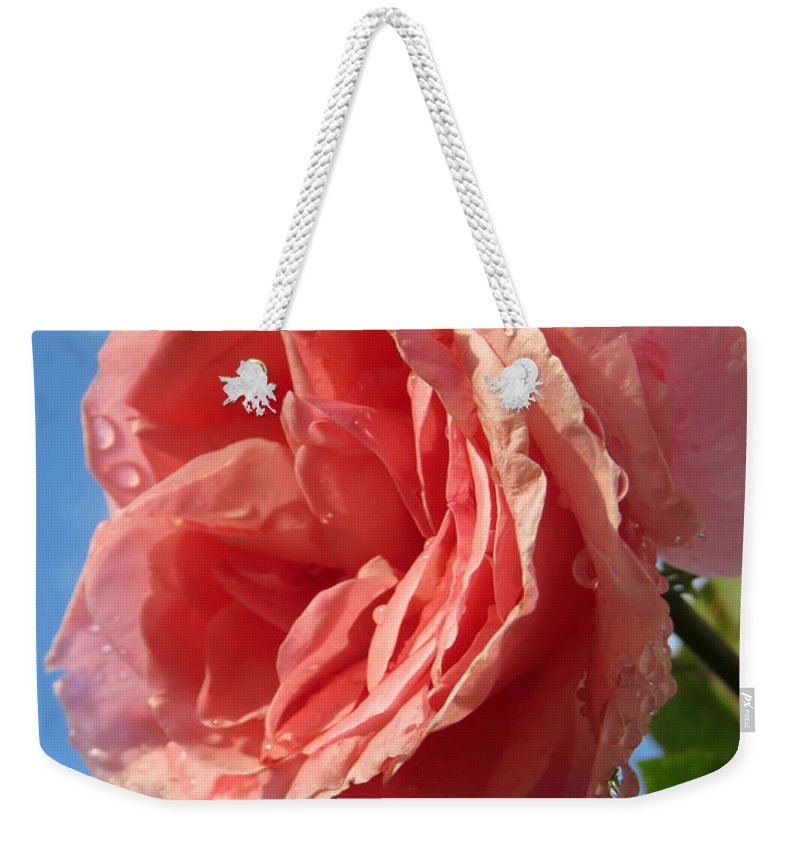 Rose Weekender Tote Bag featuring the photograph The Queen by Phyllis Beiser