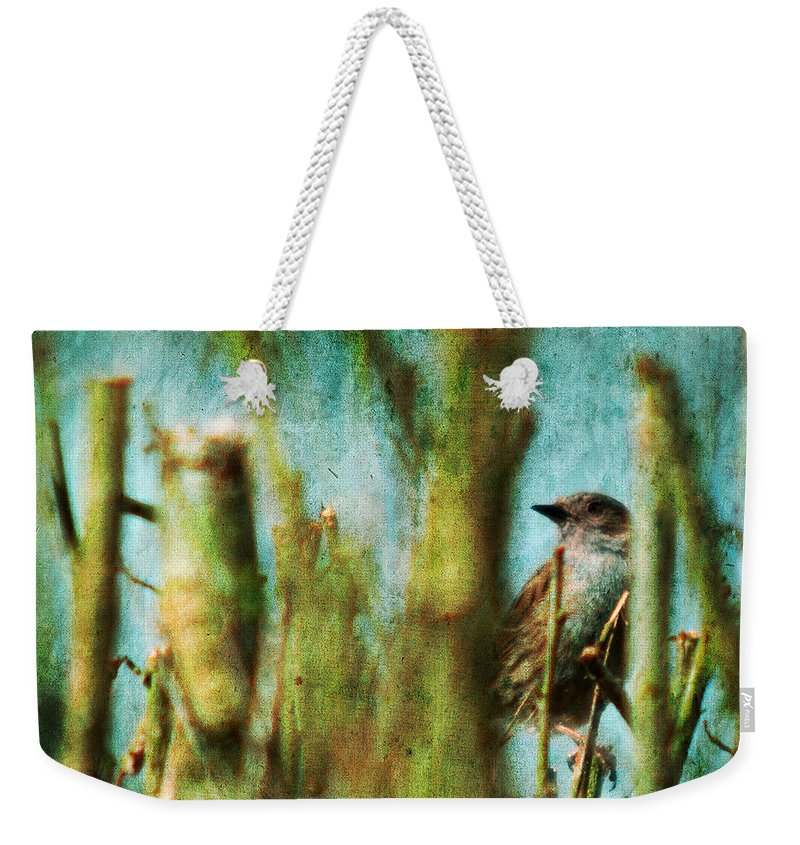 Thrush Weekender Tote Bag featuring the photograph The Thrush by Angel Ciesniarska
