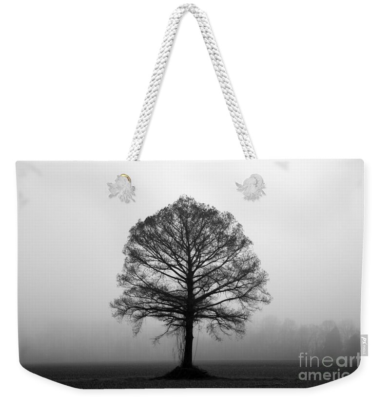 Tree Weekender Tote Bag featuring the photograph The Tree by Amanda Barcon