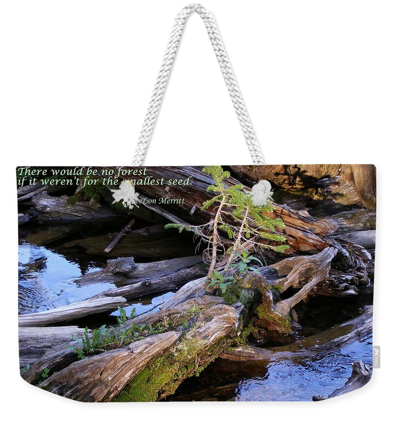 Water Weekender Tote Bag featuring the photograph There Would Be No Forest... by DeeLon Merritt