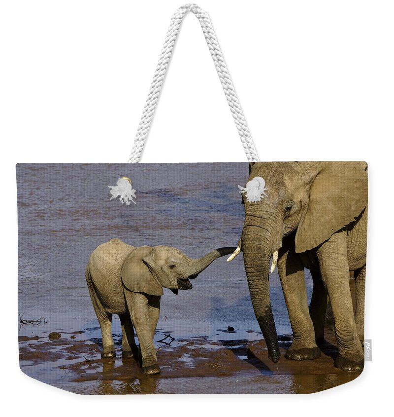 Africa Weekender Tote Bag featuring the photograph This Is My Mother by Michele Burgess