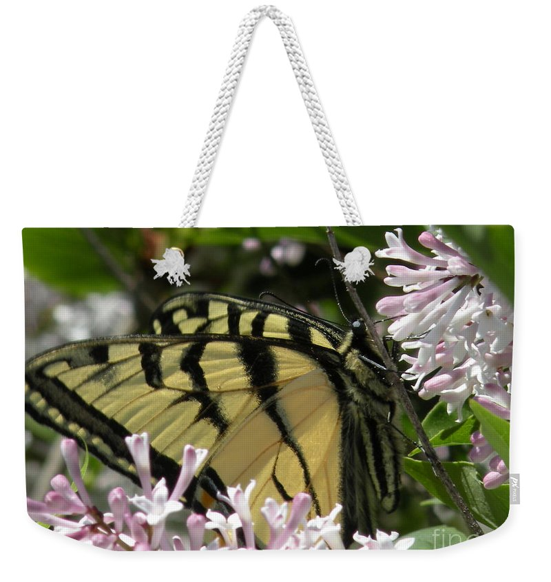 Tiger Weekender Tote Bag featuring the photograph Tiger Swallowtail Butterfly by Joanne Young