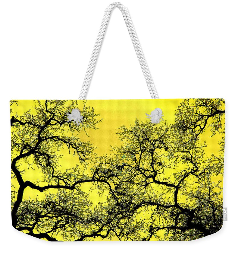 Digital Art Weekender Tote Bag featuring the photograph Tree Fantasy 18 by Lee Santa