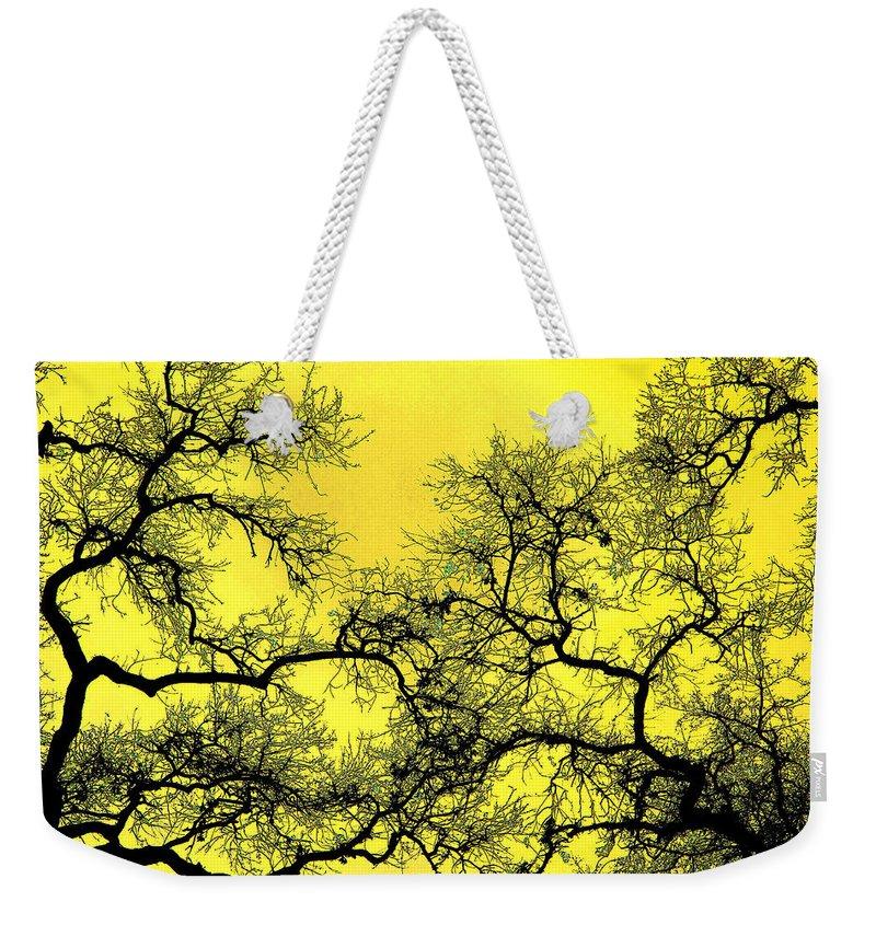 Digital Art Weekender Tote Bag featuring the photograph Tree Fantasy 18 by Lee Santa
