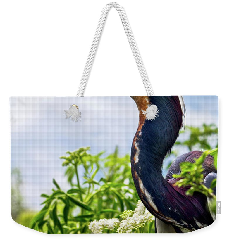 Bird Weekender Tote Bag featuring the photograph Tri-colored Heron by Christopher Holmes