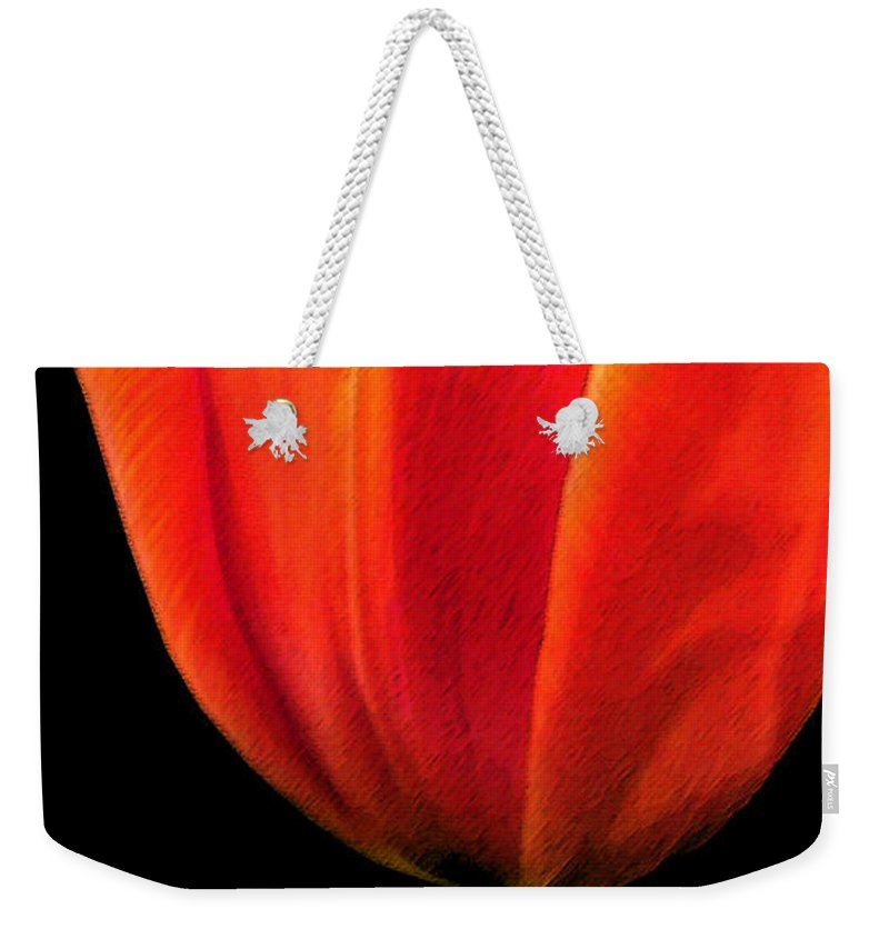 Tulips Weekender Tote Bag featuring the photograph Tulip by Amanda Barcon