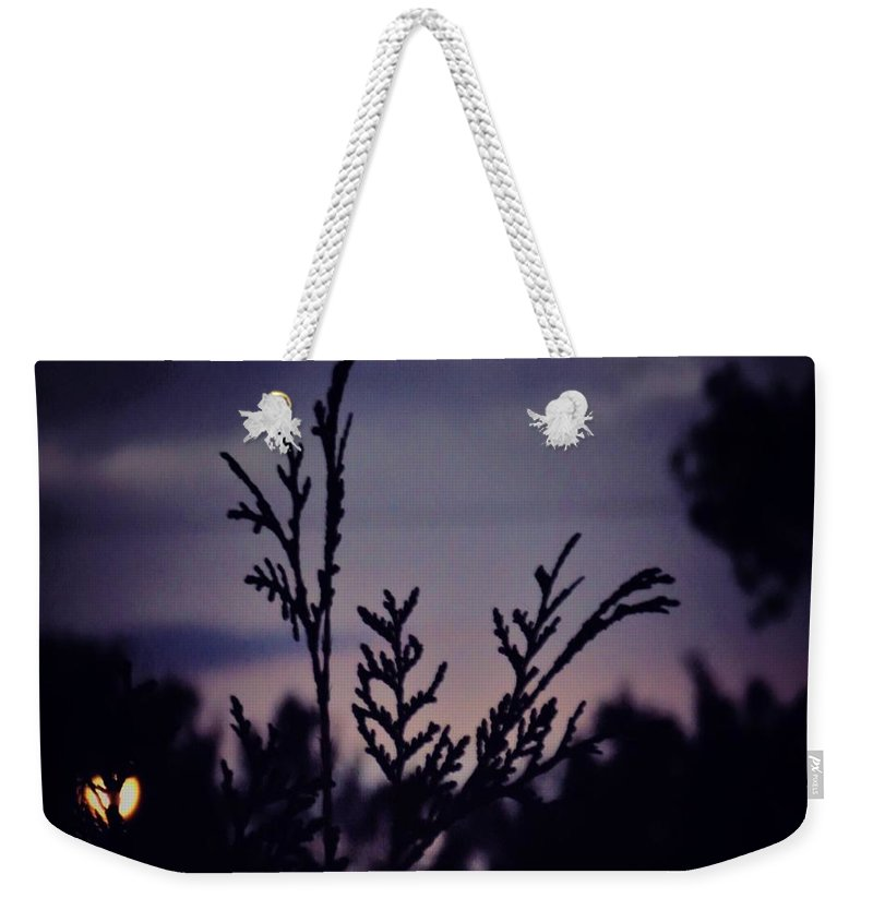 Photograph Copyright Mary Lee Parker 17 Weekender Tote Bag featuring the photograph Twilight by MaryLee Parker