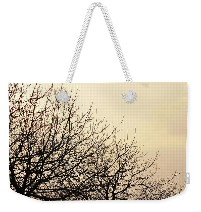 Trees Weekender Tote Bag featuring the photograph Untitled by Ilaria Andreucci