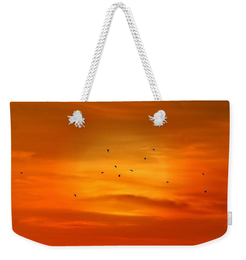 Silhouettes Weekender Tote Bag featuring the photograph Upon A Sunset Flight by Angie Tirado