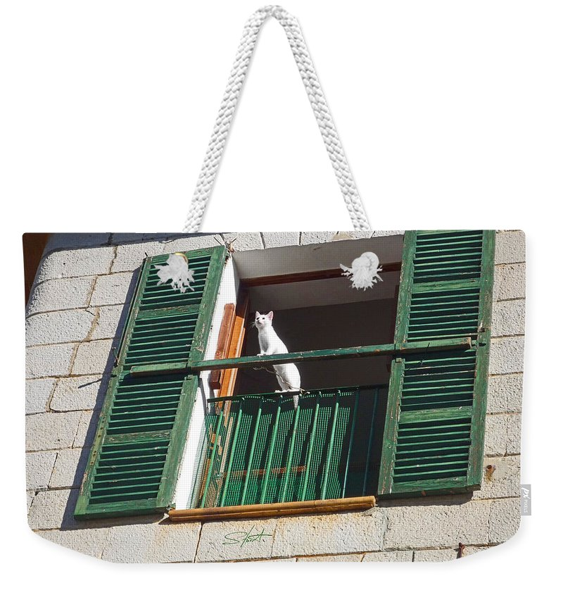 White Cat Weekender Tote Bag featuring the painting View by Charles Stuart