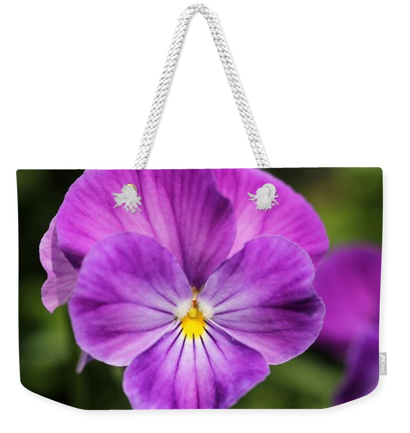 Mccombie Weekender Tote Bag featuring the photograph Viola Named Columbine by J McCombie