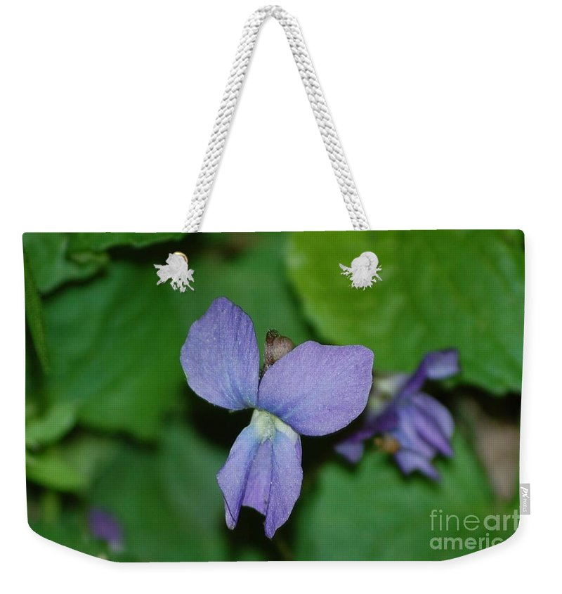 Landscape Weekender Tote Bag featuring the photograph Violet by David Lane