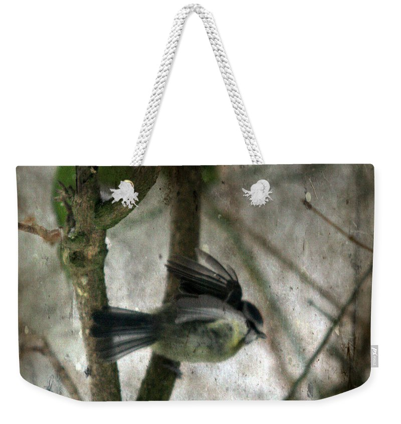 Blue Tit Weekender Tote Bag featuring the photograph Waiting For Spring by Angel Tarantella