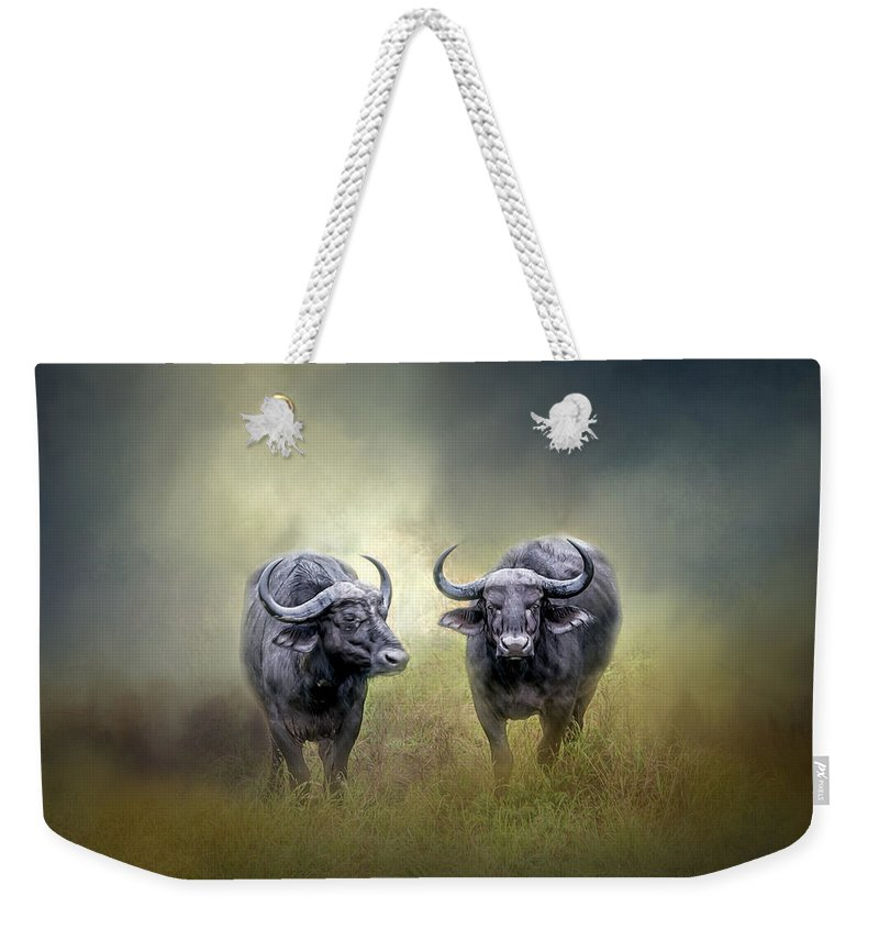 Animal Weekender Tote Bag featuring the photograph Water Buffalo by Maria Coulson