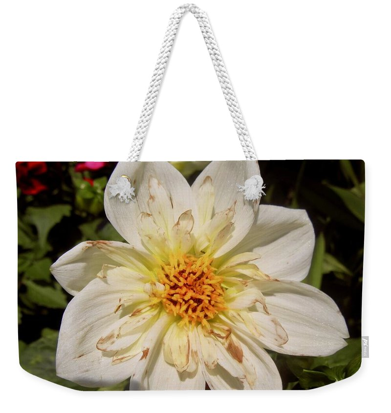 Flower Weekender Tote Bag featuring the photograph White Flower by Stephanie Moore