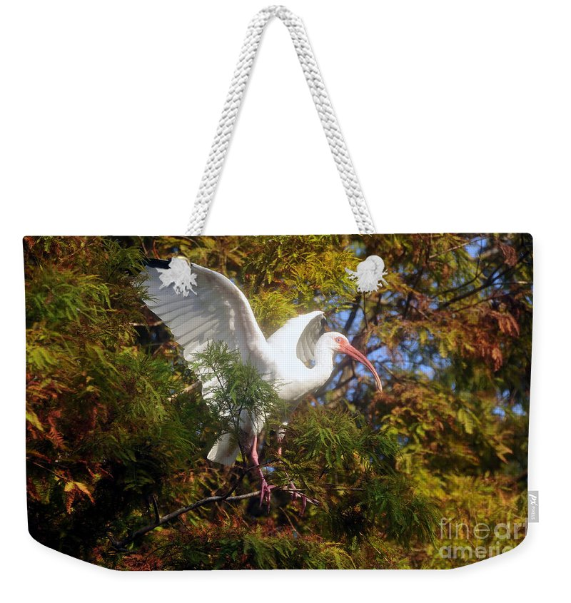 White Ibis Weekender Tote Bag featuring the photograph White Ibis by David Lee Thompson