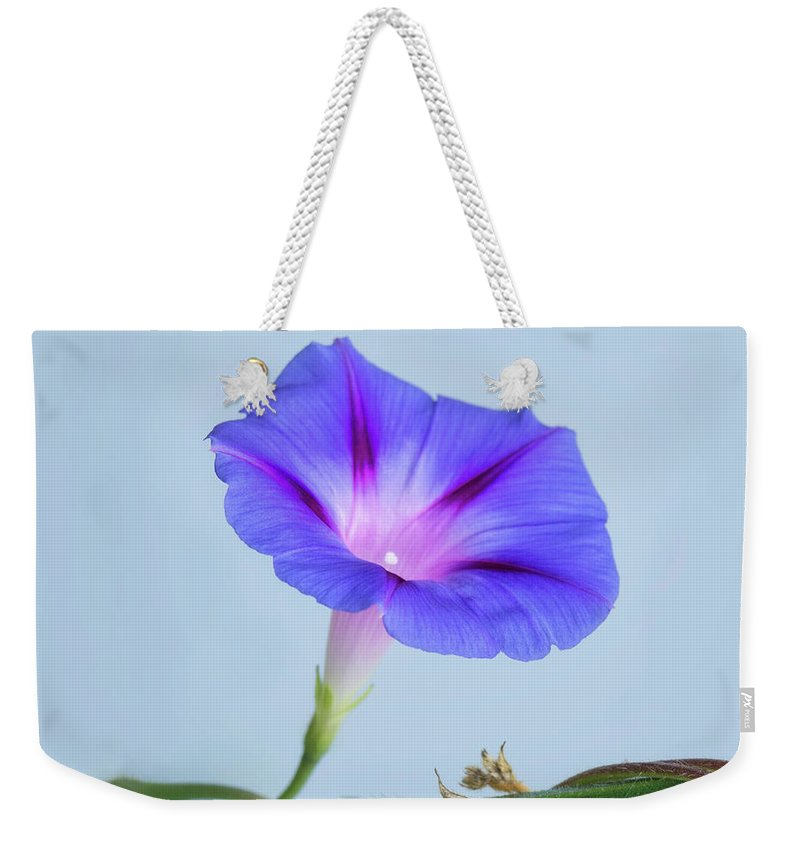 Flower Weekender Tote Bag featuring the photograph Wide Open by Claudia Kuhn